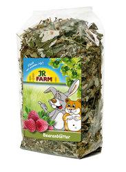 Jr farm bessen bladeren