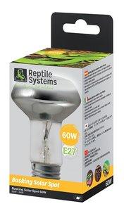 Reptile Systems basking spotlight