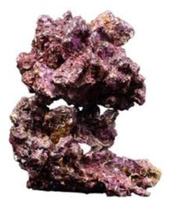 Real Reef Rock 4th gen
